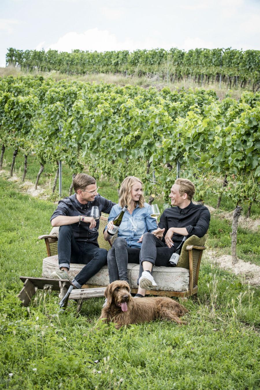 Wein von Matthias Schweighöfer, Joko Winterscheidt und Juliane Eller bei REWE